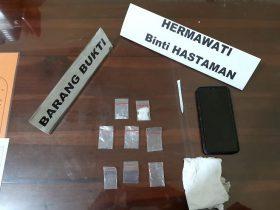 Sembunyikan Sabu 2,26 Gram, Wanita Asal Kampung Salo Diamankan Polisi