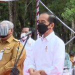 Presiden Jokowi Doakan Wali Kota Kendari Cepat Sembuh