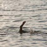 Seorang TKA Dilaporkan Hilang di Muara Sungai Sampara Konawe